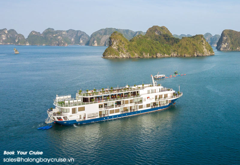 Superb Summer Promotion 2019 on Mon Cheri Cruises