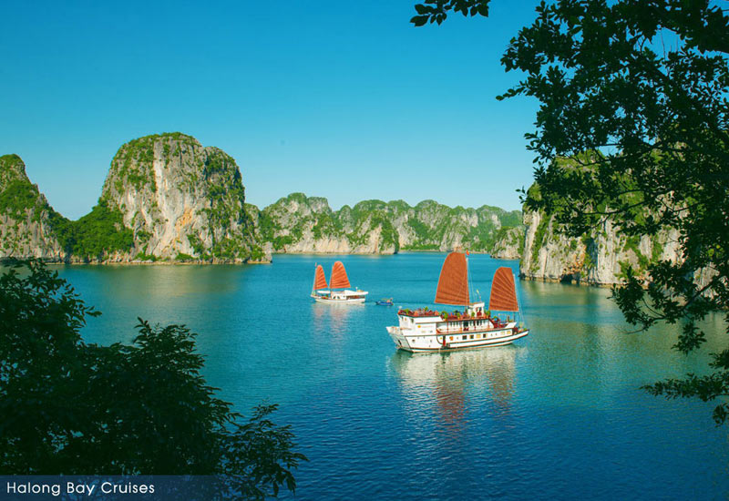 Things To Do In Halong Bay's Autumn
