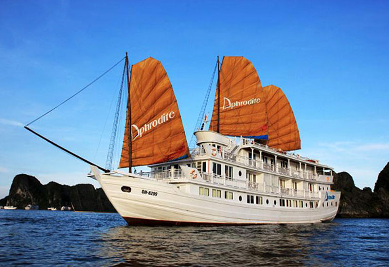 Aphrodite Cruise 2 days/1 night