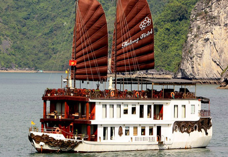 Violet Cruise 2 days/1 night