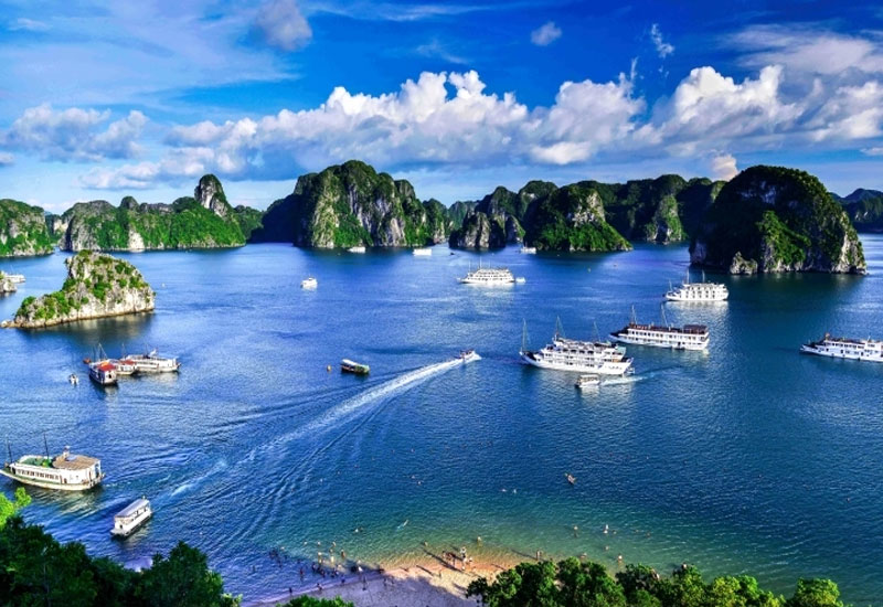 ha long bay essay Halong bay is a popular tourist destination in quang ninh province, vietnam the gulf is loved by tourists all over the world and wants to come at least once please refer to some of the best halong bay cruise recommended destination as follow to have a fun trip in vietnam.